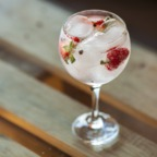 The Gin and Tonic